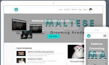 Grooming a Maltese